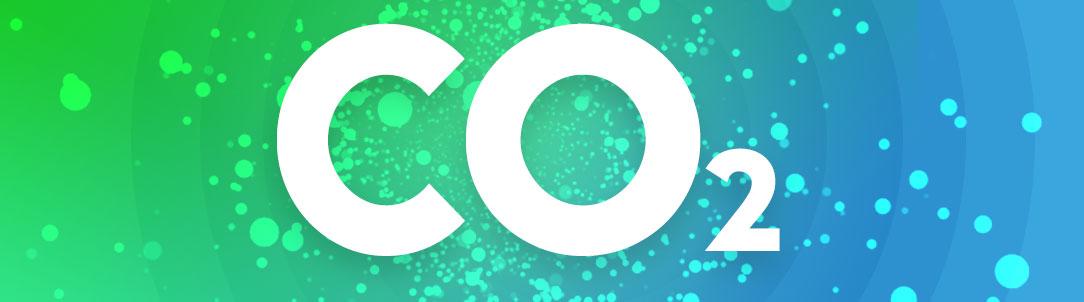 Польза углекислого газа для организма
