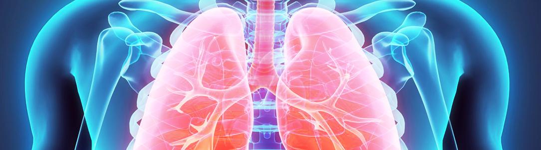 Заболевания дыхательной системы