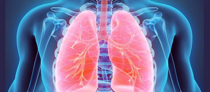 Лечение нижних дыхательных путей у взрослых
